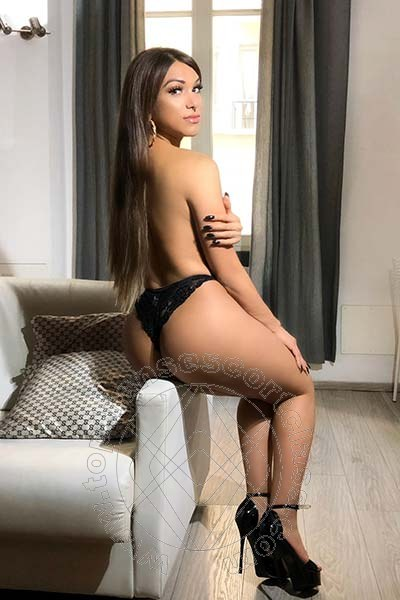 Angel Bunny  MILANO 3203851638