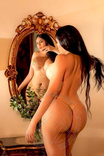 Violeta  FABRIANO 3312354244