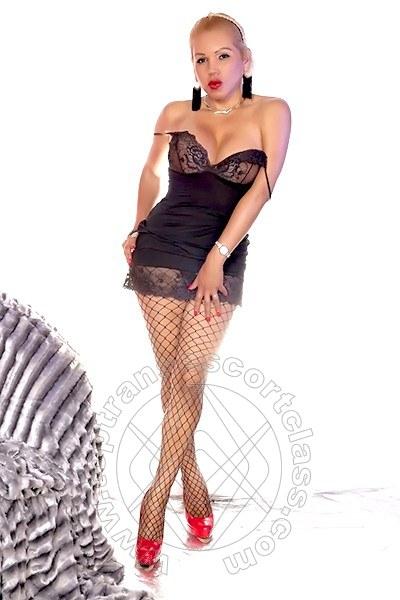 Silvia Trans  IMPERIA 3273974341